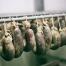 morcillas-embutidos-arrieta